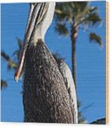 Blond Pelican Wood Print