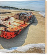 Blood And Guts I - Outer Banks Wood Print by Dan Carmichael
