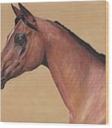 Blood Arabian Queen Wood Print