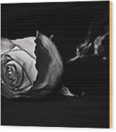 Bloodless Rose Wood Print