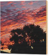 Bloody Sunset Over Palm Desert Wood Print
