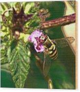 Bloom-fly  Leif Sohlman Wood Print