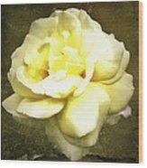 Bloom In Full Wood Print by Cathie Tyler