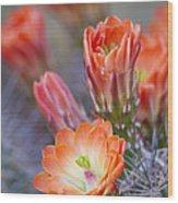 Bloom In Orange Wood Print