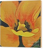 Bloomed Yellow Tulip Wood Print