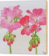 Blooming 1 Wood Print