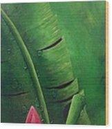 Blooming Banana Wood Print