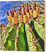 Blooming Barrel Cactus By Diana Sainz Wood Print