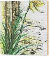 Blooming Daffodil Wood Print
