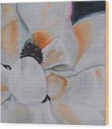 Blooming Magnolia Wood Print