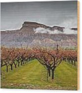 Blooming Orchards 2 Wood Print