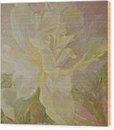 Blooming Peony Wood Print