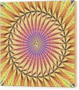 Blooming Seasons Kaleidoscope Wood Print by Derek Gedney