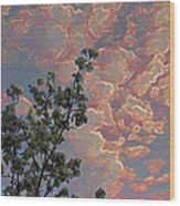 Blooming Tree And Sky Wood Print