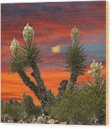 Full Blooming Yucca Wood Print
