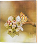 Blooms And Butterflies Wood Print
