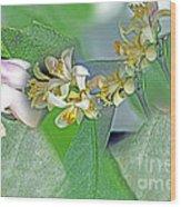 Blooms Of Lemon Tree Wood Print