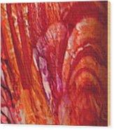 Blossom 1 Of 3 Wood Print