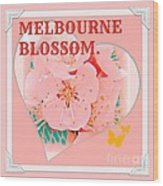 Blossom In Melbourne Wood Print