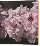 Blossom In Pink Wood Print