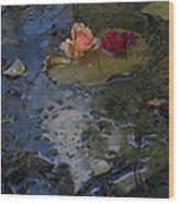 Blossom Rain 13 Wood Print