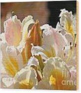 Blossom Top Wood Print