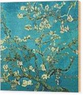 Blossoming Almond Tree Wood Print