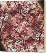Blossoming Blossoms Wood Print