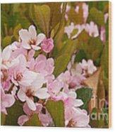 Blossoms Of The Rain 2 Wood Print