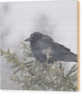 Blowin' In The Wind - Crow Wood Print