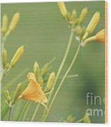 Blowing In The Breeze Wood Print by Lorraine Louwerse