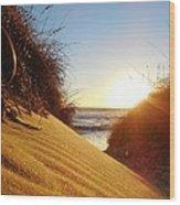 Blowing Sand Dune 12 11/03 Wood Print