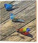 Blue And Indigo Buntings - Three Little Buntings Wood Print