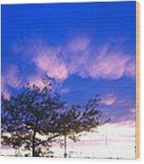 Blue And Purple Skies At Sunset Wood Print