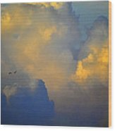 Blue And Yellow Clouds At Sunset With Birds Usa Wood Print