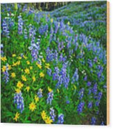 Blue And Yellow Hillside Wood Print