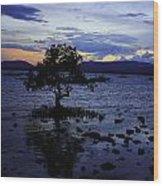 Blue Wood Print by Ange Sylvestri