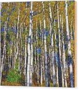 Blue Aspen On Grand Mesa Wood Print