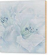 Blue Azalea Flowers Wood Print