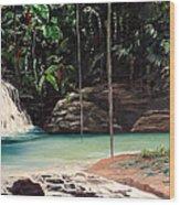 Blue Basin Wood Print