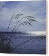 Blue Beach Wood Print