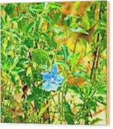 Blue Belle Wood Print