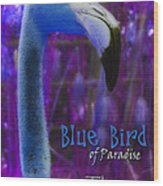 Blue Bird Of Paradise - The Fuzz Wood Print