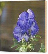 Blue Bliss   # Wood Print