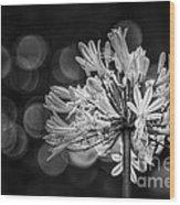Blue Blooms B/w Wood Print