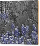 Blue Bonnet Cactus Wood Print