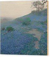 Blue Bonnet Field In San Antonio Wood Print