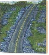 Blue Bonnet Road Wood Print