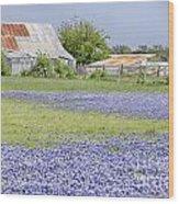 Blue Bonnets Barn V2 Wood Print