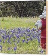 Blue Bonnets Fire Hydrant V2 Wood Print